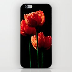 Elegance iPhone & iPod Skin