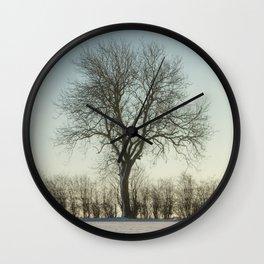 Winter tree in the low sun Wall Clock