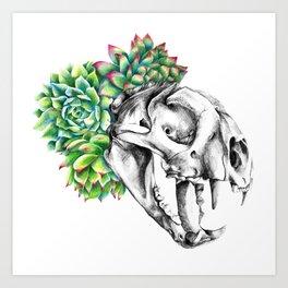 Rock Rose Cat Skull Art Print
