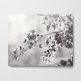 Black and White Floral Photography, Grey Neutral Nature Art, Light Gray Botanical Flower Photo Metal Print