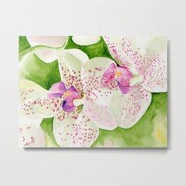 Fuschia Orchid Metal Print