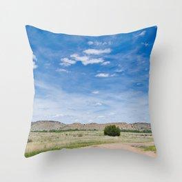 Oklahoma Beauty 2 Throw Pillow