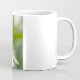 Ecinacea Coffee Mug