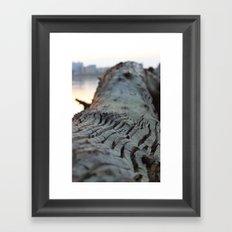 albero sapiente Framed Art Print