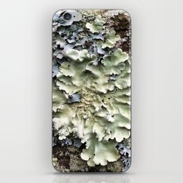 Nature's Fence Flowers iPhone Skin