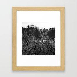 Frosted Tips Framed Art Print