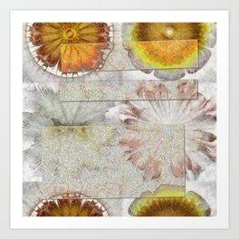 Jamoke Layout Flower  ID:16165-022406-67031 Art Print