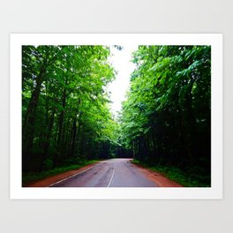 Winding Road in Forest Art Print