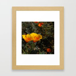poppies will put you to sleep Framed Art Print