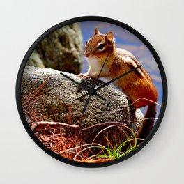 Portrait of a Chipmunk Wall Clock