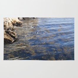 Cold Maine Waters Rug