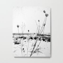 | the desolation flowers | Metal Print