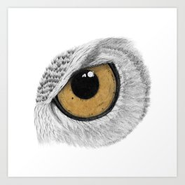 Gold Owl Eye Art Print