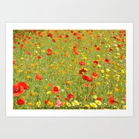 wild flower garden Art Print