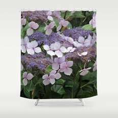 Hydrangea Violet Hues Shower Curtain