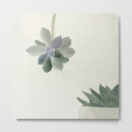 Succulents in shades of green and lilac Metal Print