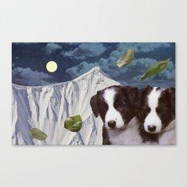 Basil Leaf Moon Dollar Night Canvas Print