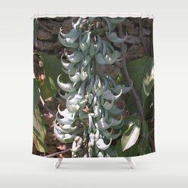 Jade Vine - Strongylodon macrobotrys Shower Curtain