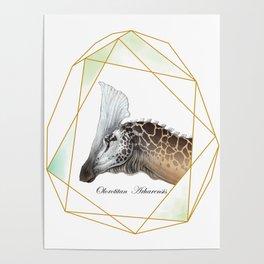Olorotitan Poster