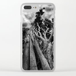 Clawing The Skies Clear iPhone Case