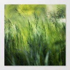 greenalize Canvas Print
