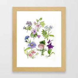 Botanical garden woodland wildflower nature art study Framed Art Print