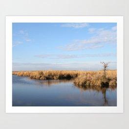 Peaceful Morning in the Marsh Art Print