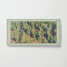 AUTUMN BLUEBERRIES IN OPEN ALPINE FOREST NORTH CASCADE RANGE Metal Print