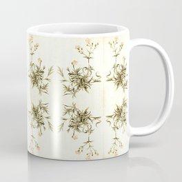 gypsophila repens Coffee Mug