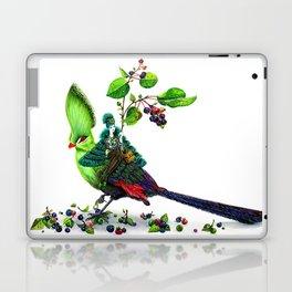 Turaco Laptop & iPad Skin