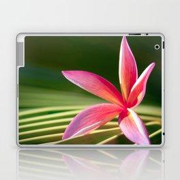 A Pure World Laptop & iPad Skin