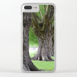 Cambridge tree 2 Clear iPhone Case