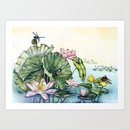 Japanese Water Lilies and Lotus Flowers Art Print