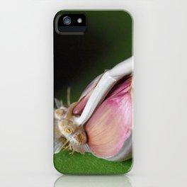 Garlic and Tomato iPhone Case