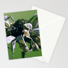 Blume o2 Stationery Cards