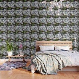 Hail, Granizo Wallpaper