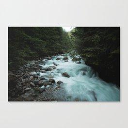 Pacific Northwest River II Canvas Print