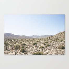 The Mojave Part II Canvas Print