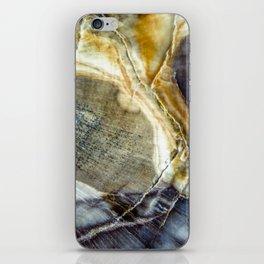 Petrified wood 2003 iPhone Skin