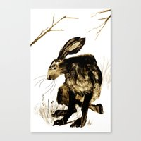 hare Canvas Prints featuring Hare by Maddi Matthews