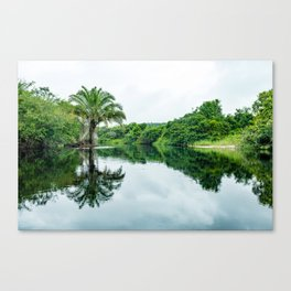 Tree on Water Canvas Print