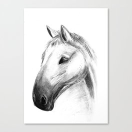 Horse Tales Canvas Print