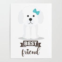 Poodle Best Friend Poster