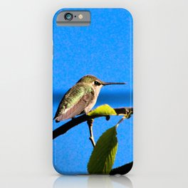 Sweet Little Hummingbird iPhone Case