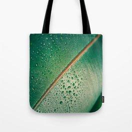 Close Up Of Tropical Succulent Green Leaf Tote Bag