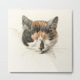Vintage Cat Illustration II Metal Print