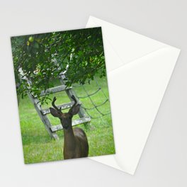 Observant Deer Stationery Cards