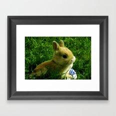 The Egg Keeper Framed Art Print