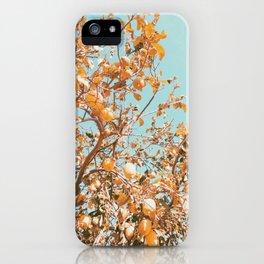 Golden Lemon Tree Photo iPhone Case