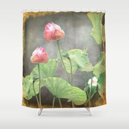 Asiatic Flowers in Pale Pink Shower Curtain
